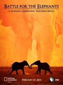 Battle-For-The-Elephants-Poster-Social