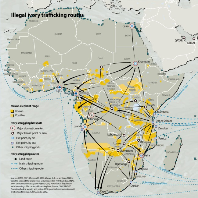 illegal-ivory-trafficking-routes_486e