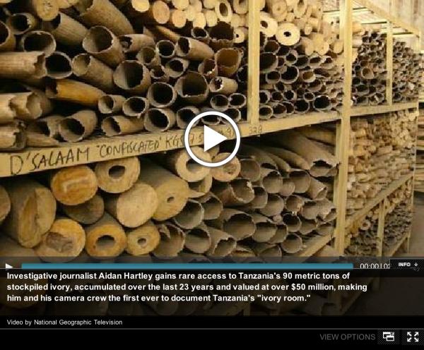Tanzania's ivory stockpile
